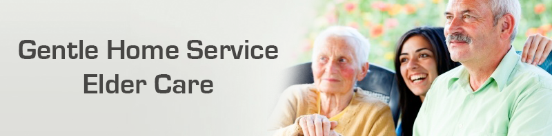 Elder Care in Illinois